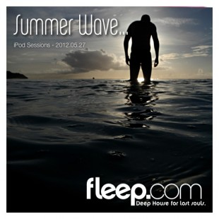 Summer Wave...